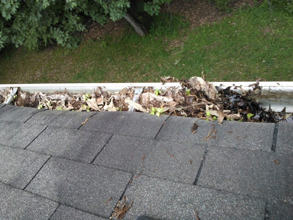 Blocked Gutters in Houston